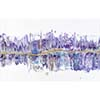 Violaceous by Jennifer Mone Hill